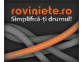 Cum au aparut rovinietele online pe piata din Romania